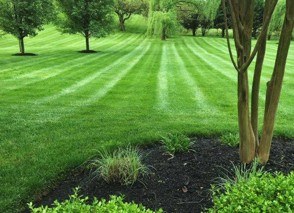 Landscape maintenance for Sykesville, MD
