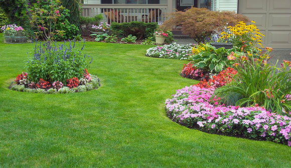 Landscape Design for Clarksville, MD