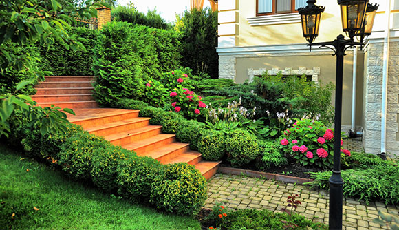 Commercial and Residential Landscape Maintenance in Ellicott City, Maryland