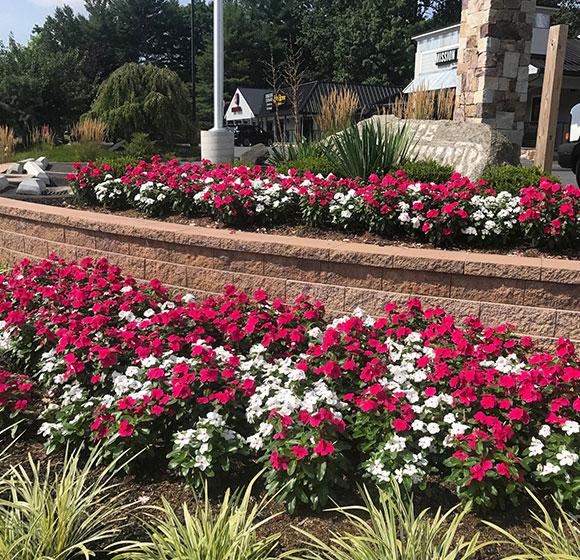 Landscape Maintenance in Ellicott City, MD